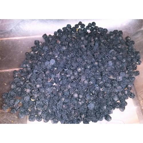 arónia čierna - plod