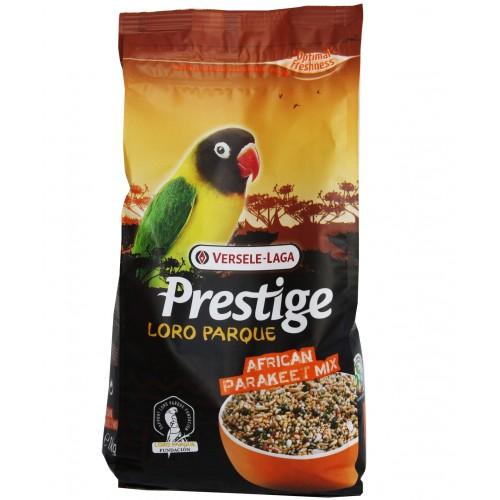 Premium Prestige African parakeet