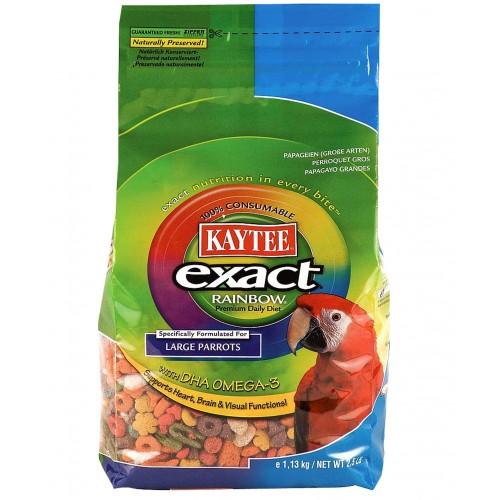 Exact Rainbow Large Parrot Chunky