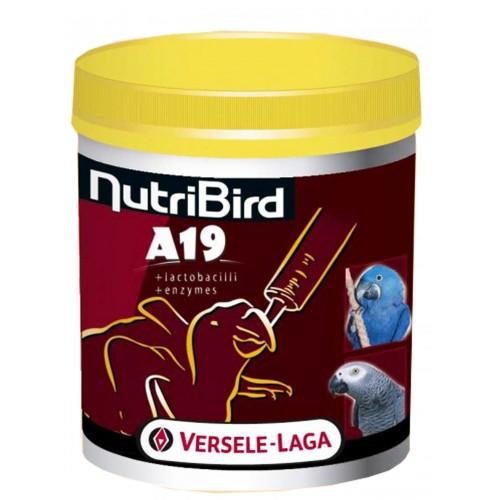 Nutri Bird A19