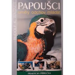 Papoušci - umělý odchov mláďat