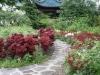 Čínska časť - krásne záhrady