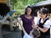 krotké ary vítajú návštevníkov hneď pri vchode
