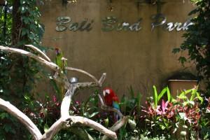 vchod do vtáčieho parku